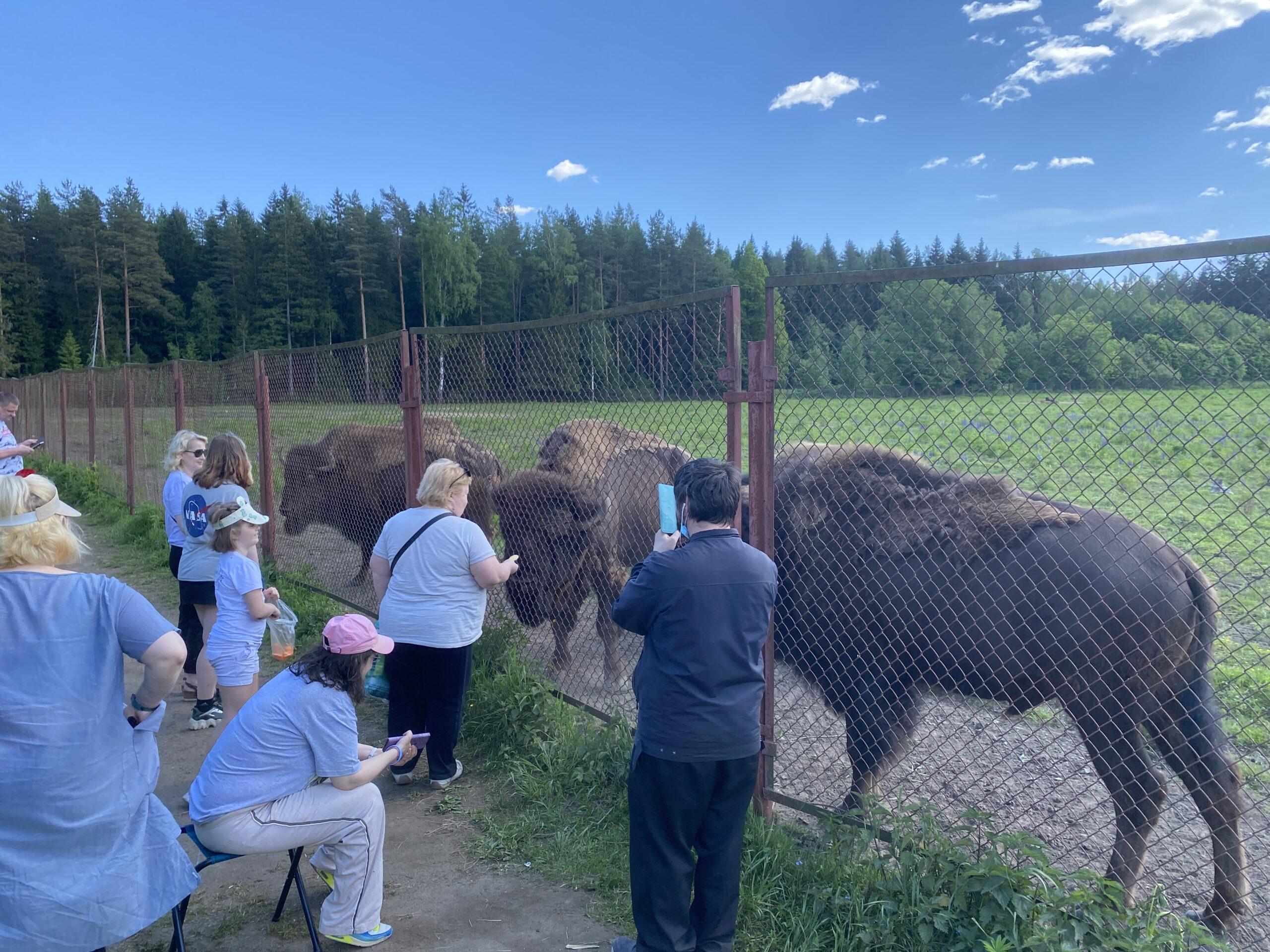 Посещение контактного зоопарка «Зубренок»